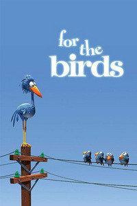 鸟!鸟!鸟!