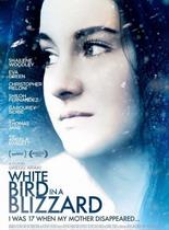 暴风雪中的白鸟/反思中的娇娇女