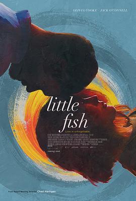 小鱼-鱼的记忆